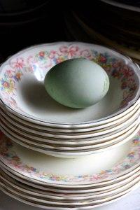 last blue egg
